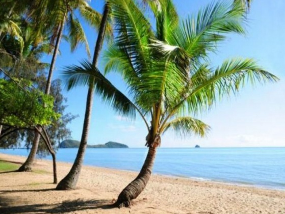 Palm Cove Queensland Accommodation - www.palmcoveqldaccommodation.com.au